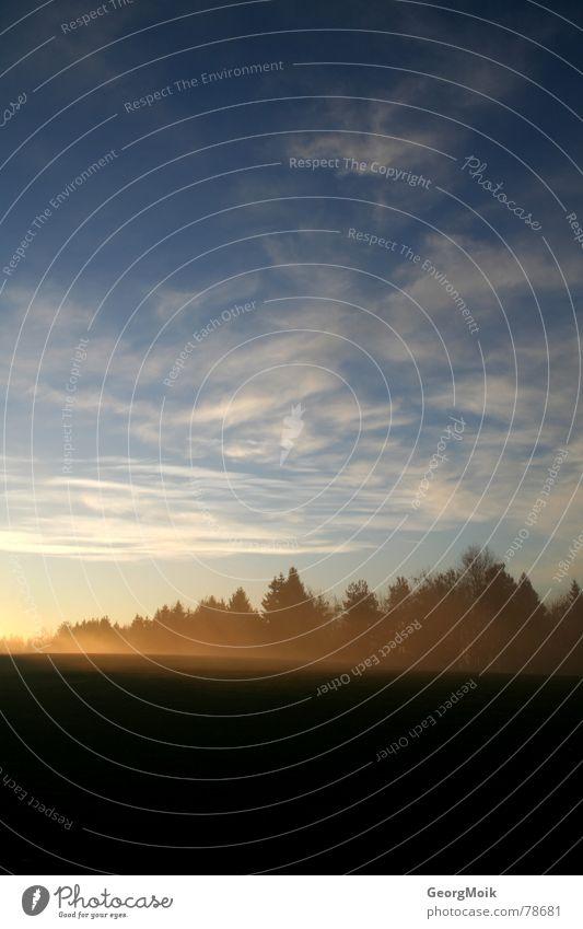 golfen am morgen Natur schön Himmel Baum Sonne blau rot Sommer Blatt Wolken gelb Wald kalt Herbst Spielen Berge u. Gebirge