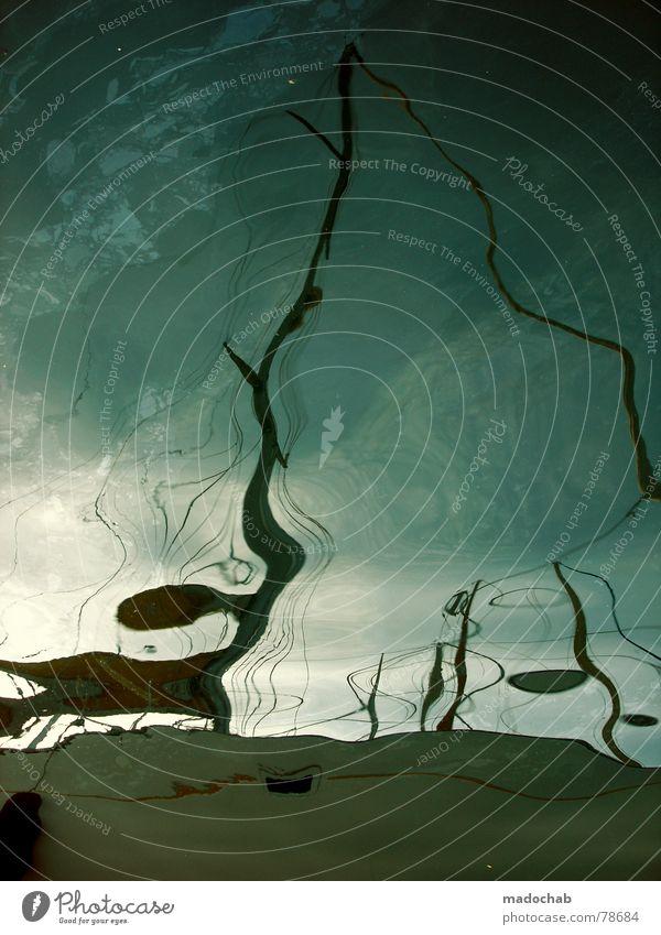 KLAR Wasser Meer Ferien & Urlaub & Reisen träumen See Wasserfahrzeug Wellen Hafen Teile u. Stücke obskur Frankreich Gemälde Anlegestelle Schifffahrt Surrealismus durcheinander