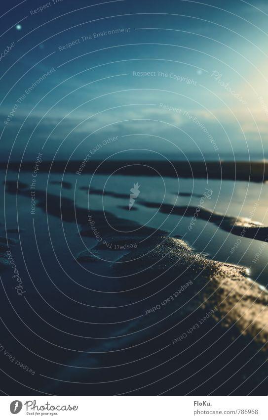 Mondschein über dem Wattenmeer Ferien & Urlaub & Reisen Abenteuer Ferne Expedition Strand Meer Umwelt Natur Landschaft Urelemente Erde Wasser Himmel Nachthimmel