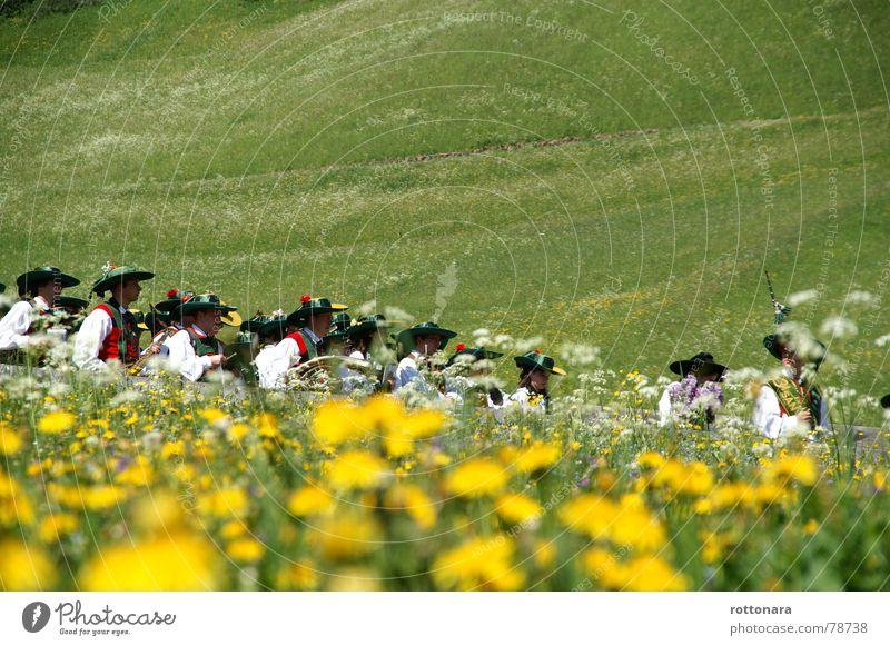 durch die wiese Mensch Himmel Mann Natur grün Pflanze Sommer gelb Wiese Gras Musik hell mehrere Italien Umzug (Wohnungswechsel) Löwenzahn
