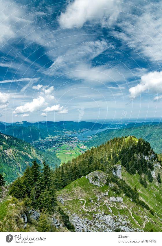 Blick zum Tegernsee Ferien & Urlaub & Reisen Ausflug wandern Klettern Bergsteigen Umwelt Natur Landschaft Himmel Wolken Sommer Schönes Wetter Baum Wald Alpen