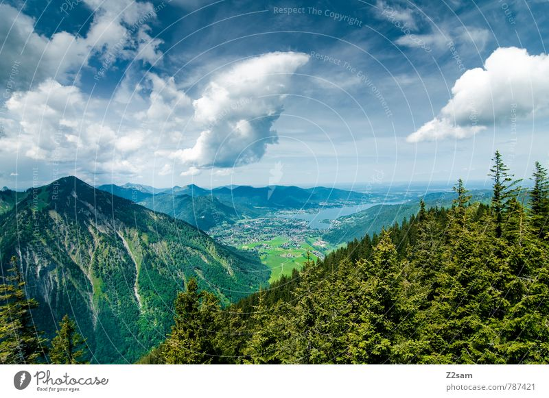 Tegernsee Himmel Natur Ferien & Urlaub & Reisen blau grün Sommer Baum Erholung Landschaft Wolken Wald Umwelt Berge u. Gebirge See Idylle Tourismus