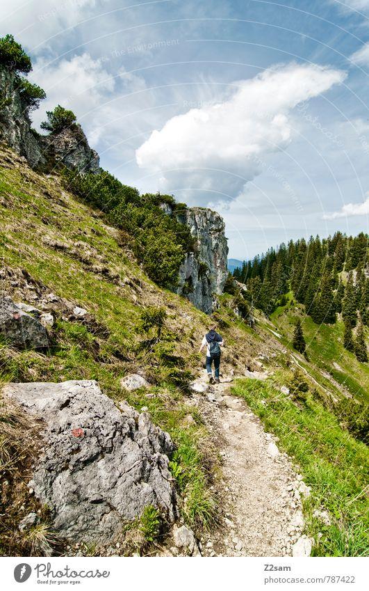 abwärts Mensch Himmel Natur Ferien & Urlaub & Reisen blau grün Sommer Baum Landschaft Wolken Umwelt Berge u. Gebirge natürlich Gesundheit gehen Felsen