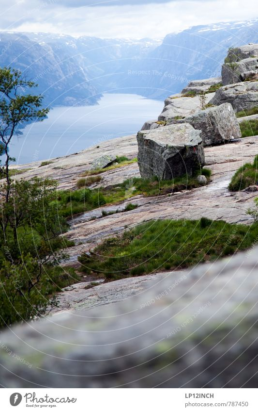 N O R W A Y - IDG - XX Ferien & Urlaub & Reisen Tourismus Abenteuer Freiheit Berge u. Gebirge wandern Natur Landschaft Tier Wasser Himmel Sommer Baum Fjord