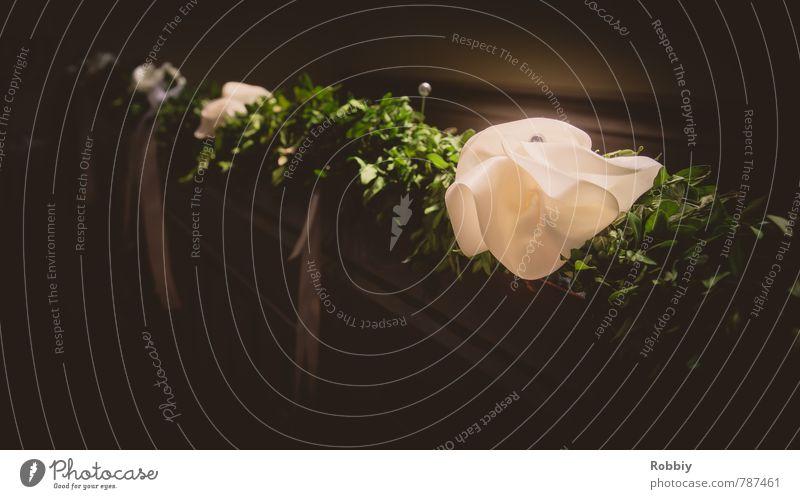 grüner Pfad Holz schön braun weiß Kirchenbank Kranz Blüte Dekoration & Verzierung Schleife Schleifenblumen Hochzeit Trauer Beerdigung Taufe dunkel strahlend