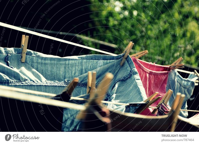 Luftgetrocknet Natur Sommer Wärme natürlich Gesundheit Garten frisch Wind Fröhlichkeit warten Bekleidung Lebensfreude einfach Schönes Wetter Sauberkeit