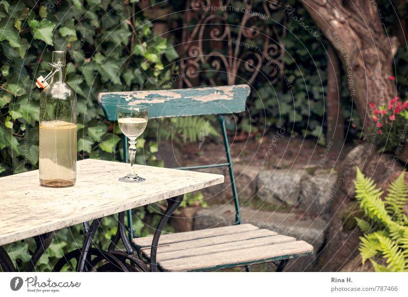HalbLeer Sommer Baum Garten warten authentisch Gefühle Traurigkeit Einsamkeit Stillleben Efeu Gartenstuhl verfallen Eisengitter Flasche Weinglas Gartentisch