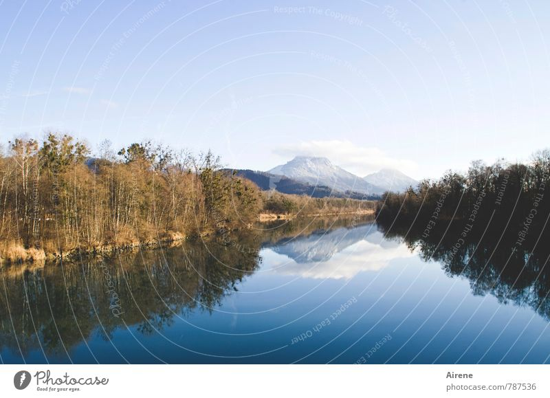 Der Inn Landschaft Urelemente Wasser Himmel Wolken Winter Schönes Wetter Schnee Alpen Schneebedeckte Gipfel Flussufer blau gold weiß einzigartig Farbe Horizont