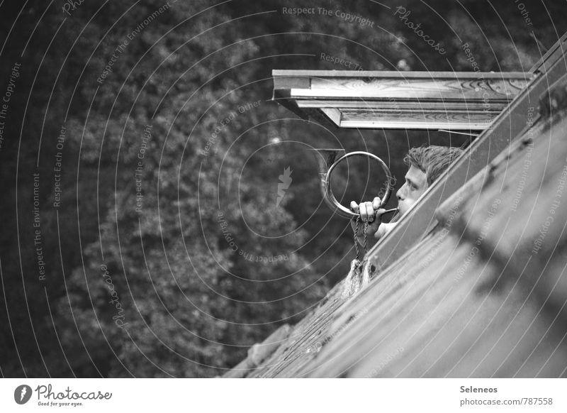 Mittagessen! Wohnung Haus Dachboden Mensch maskulin Mann Erwachsene 1 18-30 Jahre Jugendliche Natur Feld Fenster Dachfenster Kommunizieren laut sprechen
