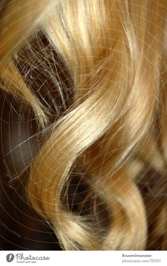Engelslocken Locken blond Farbe Frau Haare & Frisuren hair blonde locken curls