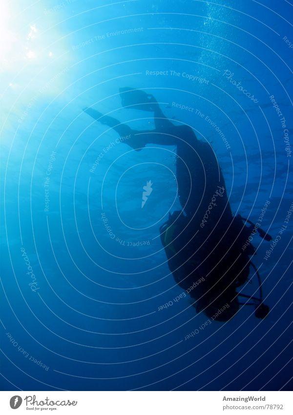 ...into the blue I Wasser Meer blau Freiheit tauchen Unendlichkeit tief Wassersport Taucher Ägypten Unterwasseraufnahme