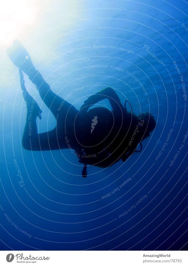 ...into the blue II Wassersport Unendlichkeit Taucher tauchen Meer Ägypten Unterwasseraufnahme blau tief Freiheit