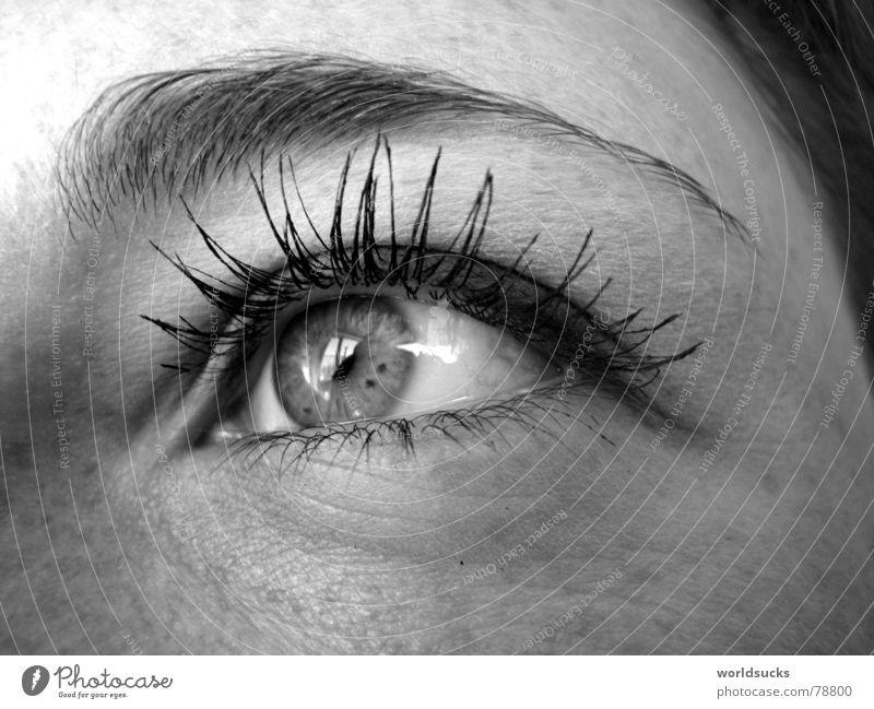 nur ein kurzer augenblick... Frau Mensch schön schwarz Gesicht Auge Freiheit Haare & Frisuren Perspektive Zukunft Hoffnung beobachten Aussicht tief
