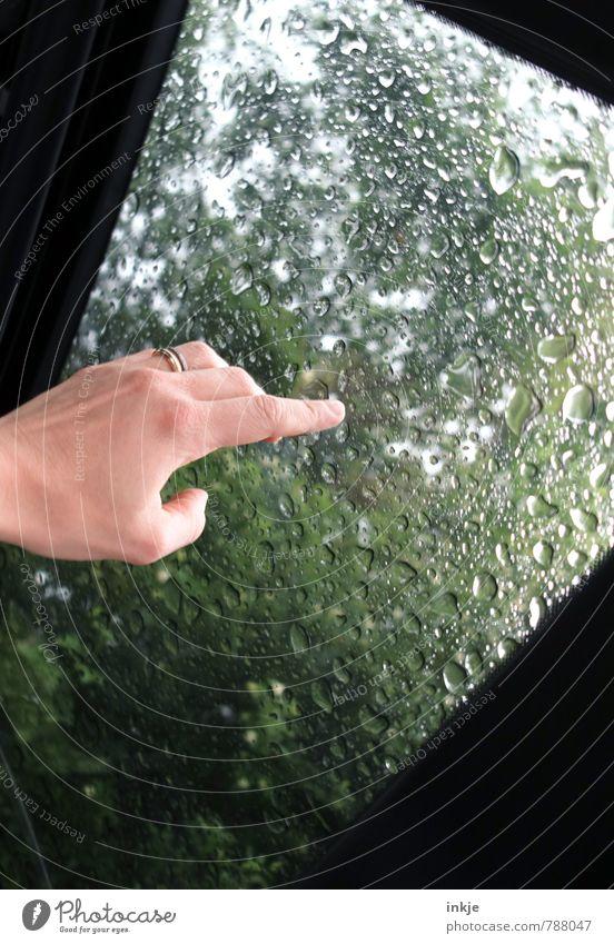 Sommerregen Hand Wassertropfen Frühling Klima Wetter schlechtes Wetter Regen Park Wald Fenster Verkehr Verkehrsmittel PKW Autodach beobachten berühren nass