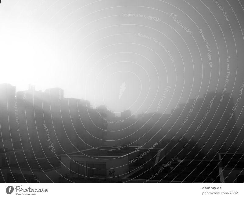 Morgenstund hat Gold im ... Hochhaus Beton Nebel Sonne kaz