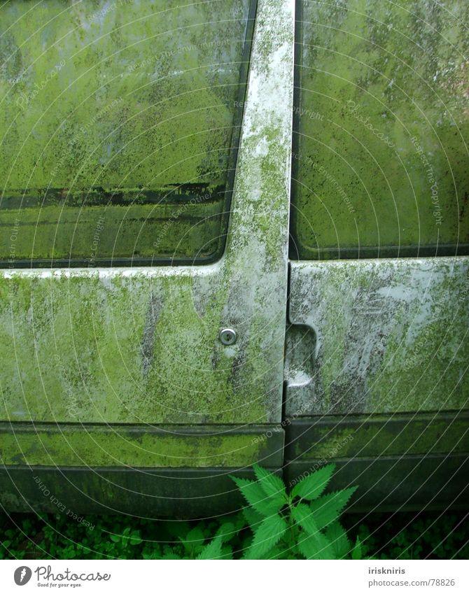 Zeichen der Zeit Natur grün Fenster grau PKW Metall dreckig Verkehr Autotür Vergänglichkeit Reinigen verfallen silber Griff Schrott Müll