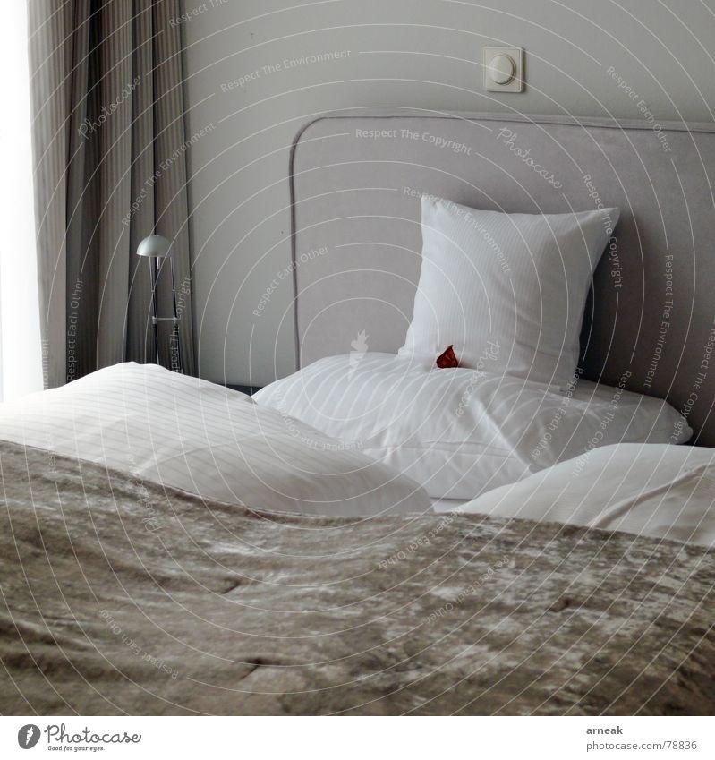 Hotel Sperber schlafen Bett Kissen Schalter Innenaufnahme ruhen Erholung Gastronomie Schlafzimmer Möbel ruhig Kopfkissen