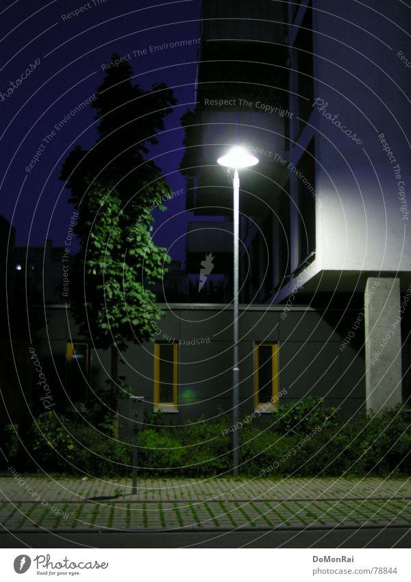 Statisten am Straßenrand Baum grün blau Pflanze ruhig Blatt Haus Einsamkeit dunkel kalt Fenster grau Park Gebäude