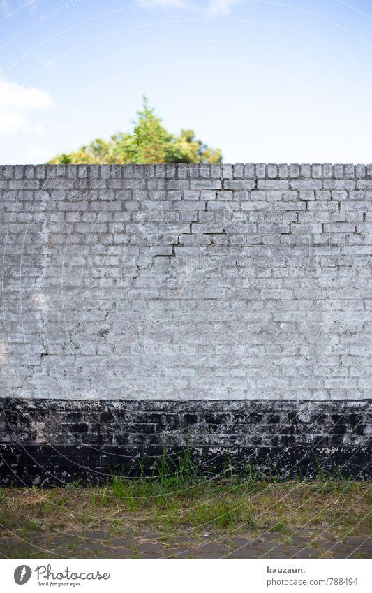 HH-Peute | vor die wand laufen. Himmel blau Pflanze weiß Sommer Sonne Baum Einsamkeit schwarz Wand Wiese Wege & Pfade Gras Mauer grau Stein