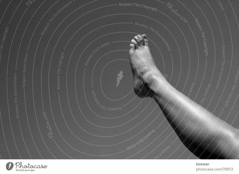 Luftfuß Himmel Sommer Freude ruhig Erholung Beine Fuß Schuhe gehen Spaziergang Fußspur Zehen Nagel Gelenk Wade Fußknöchel