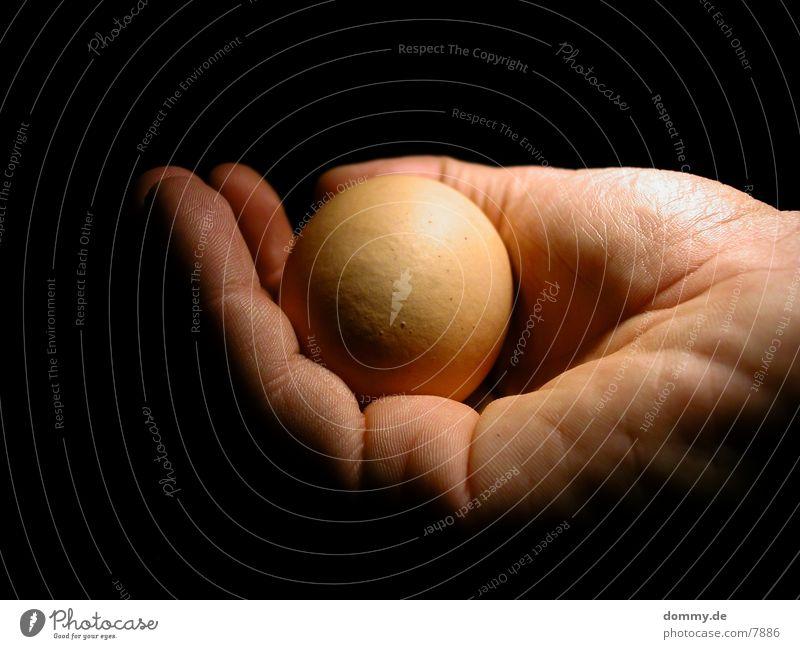 geborgenheit Hand Wärme Finger Sicherheit Physik Ei Geborgenheit Fototechnik