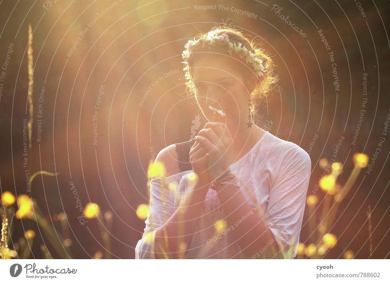 the smell of summer Junge Frau Jugendliche 18-30 Jahre Erwachsene beobachten Blühend Duft genießen leuchten frei schön natürlich Wärme weich Glück Zufriedenheit