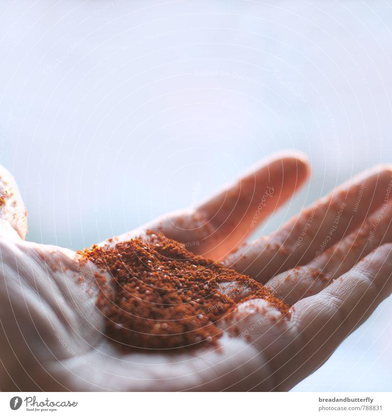 Prise Chili Lebensmittel Kräuter & Gewürze Ernährung Scharfer Geschmack Hand einfach lecker viele rot Würzig Farbfoto Innenaufnahme Textfreiraum oben