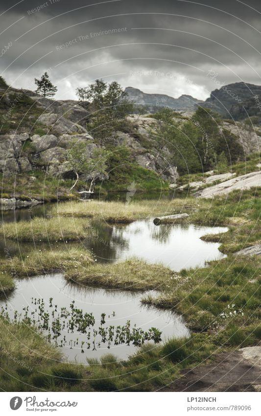 N O R W A Y - Escape - II Natur Ferien & Urlaub & Reisen Pflanze Landschaft Wolken Tier Ferne dunkel Berge u. Gebirge träumen Angst Tourismus wandern Ausflug