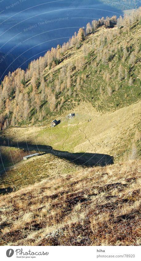 stille im herbst ... ein ort der ruhe ruhig Wald Herbst Gras Berge u. Gebirge Zufriedenheit Nebel Hütte Weide Lärche
