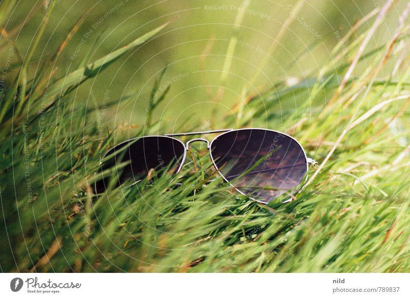 400 – Kurze Pause Lifestyle Wohlgefühl Zufriedenheit Freizeit & Hobby Ferien & Urlaub & Reisen Tourismus Freiheit Sommer Sonne Natur Pflanze Schönes Wetter Gras