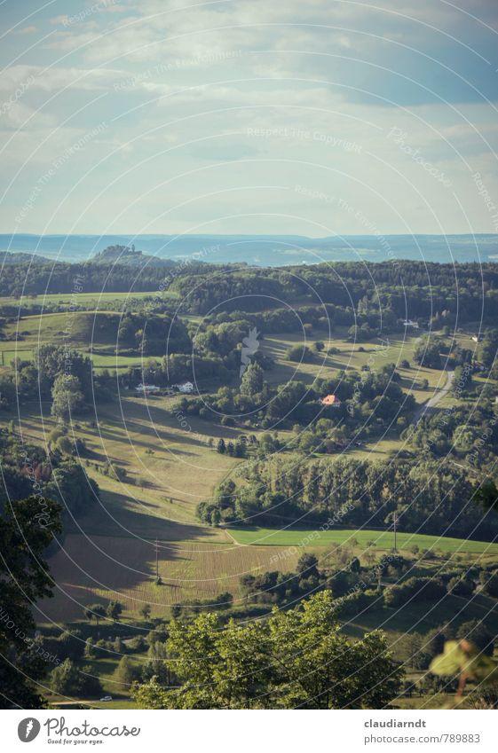 Grünes Land Umwelt Natur Landschaft Himmel Wolken Sommer Schönes Wetter Baum Wiese Feld Wald Hügel schön grün Südbaden Deutschland Ferne Farbfoto Außenaufnahme