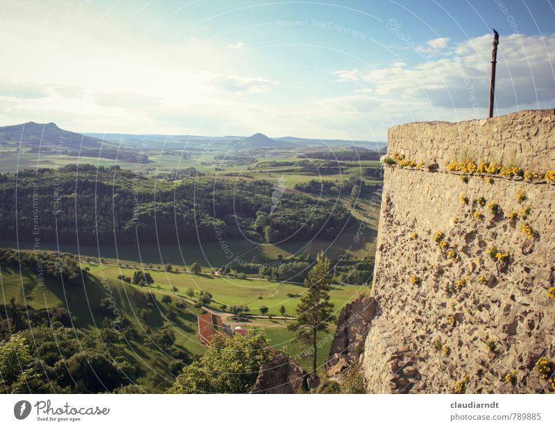 Mauerblümchen Umwelt Natur Landschaft Himmel Wolken Sommer Schönes Wetter Blume Wiese Feld Wald Hügel Burg oder Schloss Ruine Wand schön Freiheit Ferne Aussicht