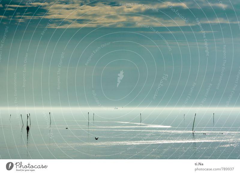 einatmen, ausatmen und die Ruhe genießen Natur blau weiß Wasser Landschaft ruhig schwarz Küste grau fliegen Wellen Zufriedenheit Schönes Wetter beobachten
