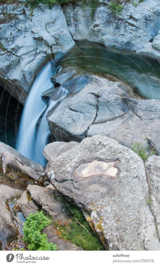 Schröder heult, Hai grinst Umwelt Natur Landschaft Sträucher Felsen Flussufer Bach Wasserfall nass Felswand Gesteinsformationen Schlucht Felsspalten