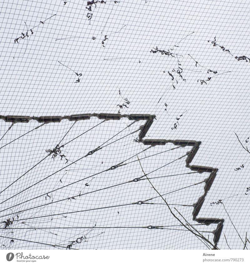 Netzbeschmutzung weiß schwarz grau Linie dreckig Netzwerk Netz Zoo eckig kariert gefangen unordentlich Zacken Käfig Zickzack Vogelkäfig