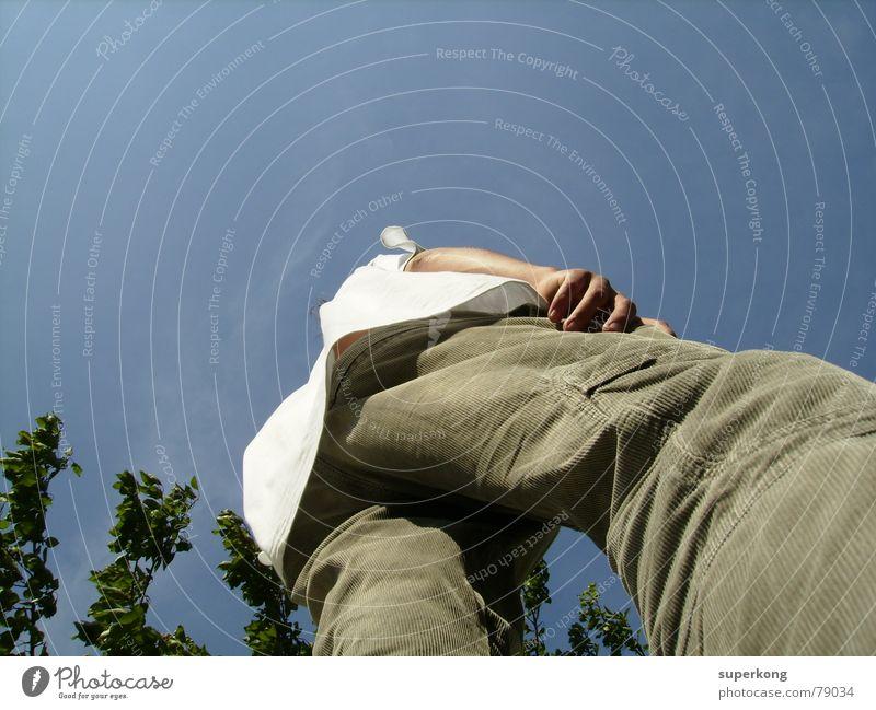 006 Mann Hand Baum blau groß Perspektive Macht Hinterteil Hose Koloss Großbrand Experte