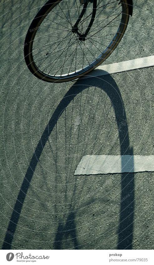Acht auf Asphalt Nabe Fahrrad ruhig stagnierend Freizeit & Hobby Sicherheit Frieden Schatten Müdigkeit Angst Straße bewegungsunfähigkeit