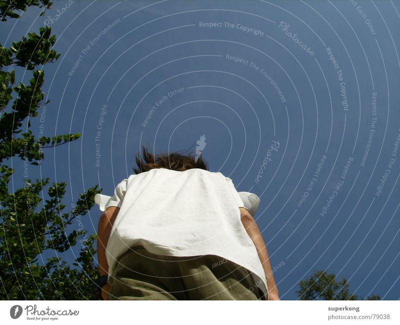 007 Koloss Mann Baum Macht hg blau Perspektive Rücken Hinterteil