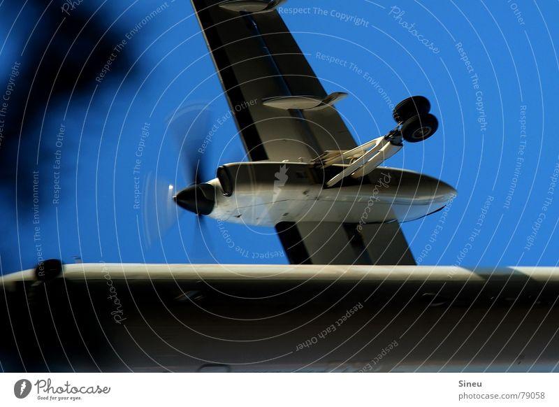 Weihnachten unter Palmen weiß blau schwarz Luft Flugzeug fliegen Beginn Luftverkehr Flugzeugstart Flugzeuglandung Blauer Himmel Abheben Verkehrsmittel Propeller