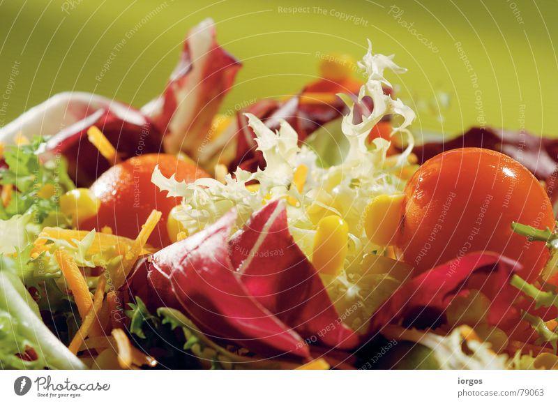 salad Natur grün rot Gesundheit Lebensmittel frisch Ernährung Wandel & Veränderung Gemüse Bioprodukte Abendessen Fensterscheibe Mittagessen Tomate Salat Mahlzeit