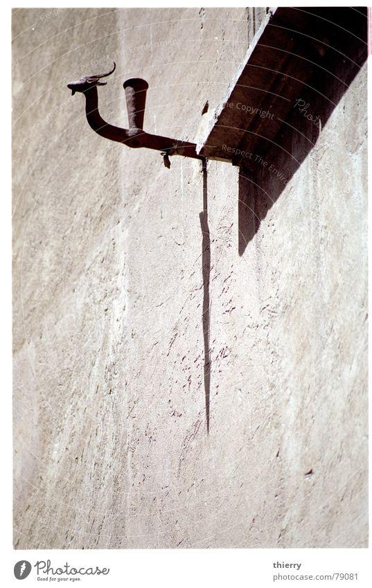 horns of the sun Ornament Detailaufnahme shadow window sill blinds blind holder capricorn animal Mauer