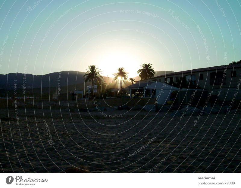 letztes licht Palme Strand Ferien & Urlaub & Reisen Frankreich ruhig lesen Sommer Himmel Meer Schatten Licht Sonnenuntergang Erholung Frieden alleine zu zweit