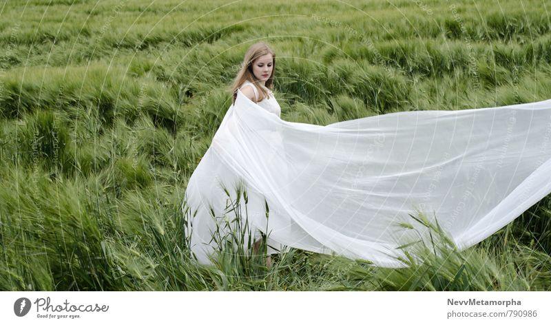 Airbender Mensch feminin Junge Frau Jugendliche 1 18-30 Jahre Erwachsene Natur Landschaft Sommer Pflanze Gras Grünpflanze Nutzpflanze Feld Kleid blond