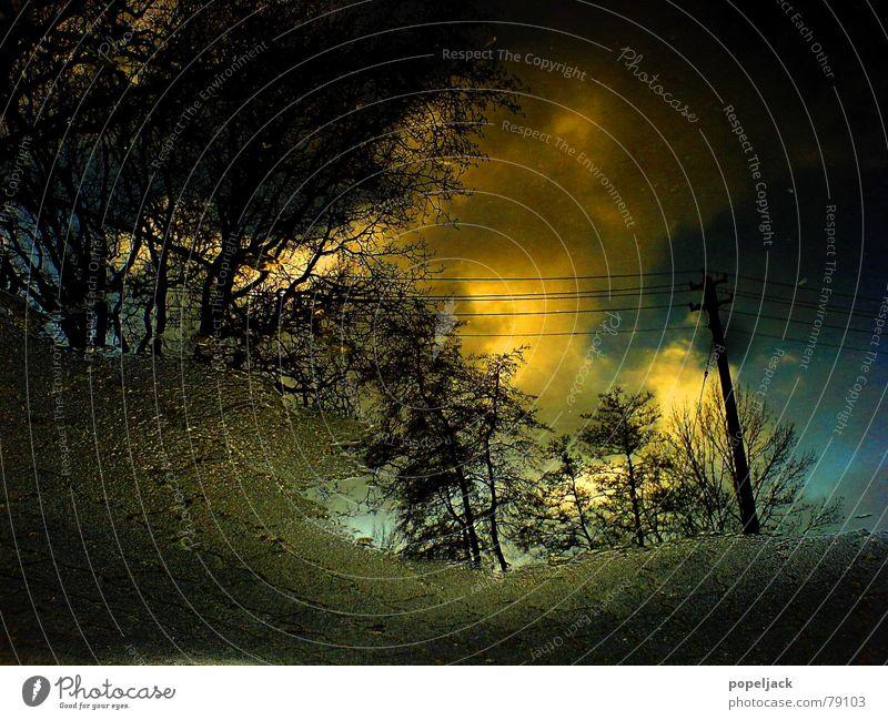 Loch im Boden Pfütze Wolken Herbst Asphalt Reflexion & Spiegelung Baum Strommast Elektrizität gelb dünn Am Rand Verkehrswege Himmel Illusion Linse Täuschung