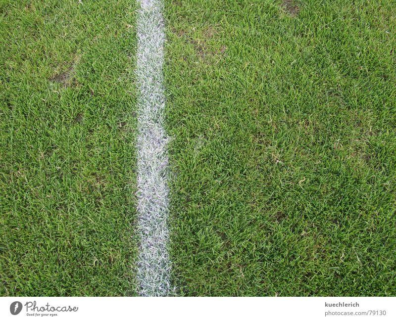 Eine Linie markiert den Spielfeldrand Natur grün Wiese Sport Spielen Gras Linie Feld Schilder & Markierungen Fußball Streifen Ball Weide Sportrasen Grenze Fußballplatz