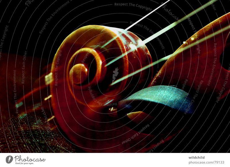 Schnecke Geige Ebenholz Holz Saite Konzert Musik Kunst Kultur Makroaufnahme Nahaufnahme