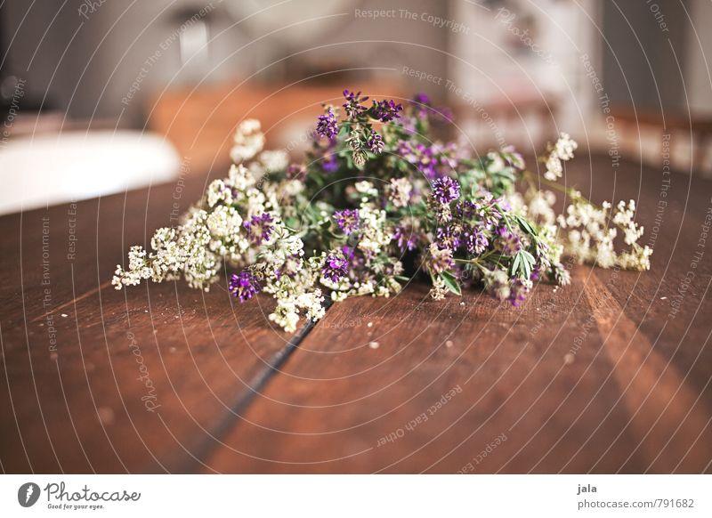 blumen Häusliches Leben Wohnung Innenarchitektur Tisch Raum Blume Blüte Blumenstrauß ästhetisch natürlich schön Holztisch Farbfoto Innenaufnahme Menschenleer