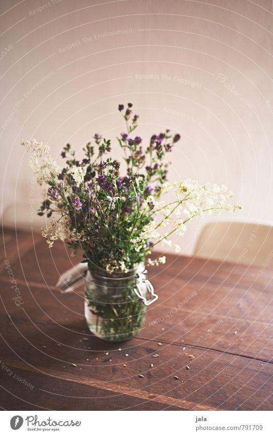 blumenstrauß Häusliches Leben Wohnung Stuhl Tisch Pflanze Blume Blatt Blüte Wildpflanze Blumenstrauß Vase ästhetisch Freundlichkeit natürlich schön Holztisch