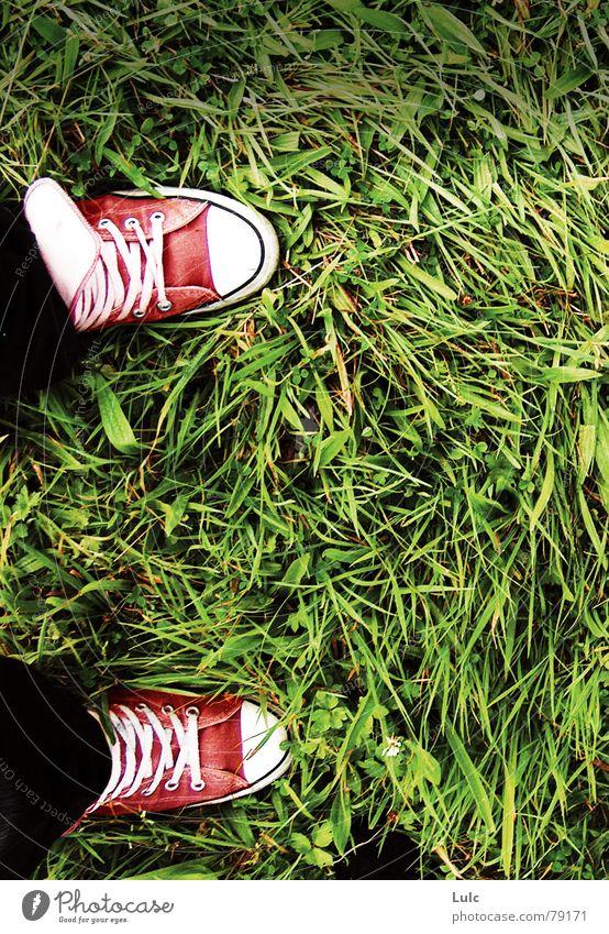 Converses inversed Farbe Wind Jeanshose Wildtier Chucks Turnschuh Schuhe