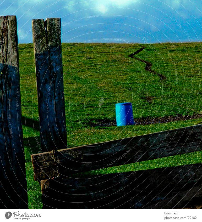 Blue Green Blues Fass Wolken Gras grün Einsamkeit plank blau Holzbrett Ölfass